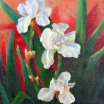 White Irises by Cheryl Wasar